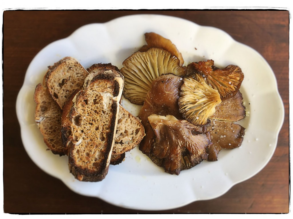 oyster mushrooms and toast